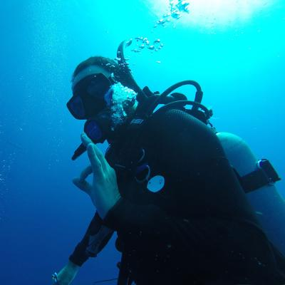 A volunteer uses sign language during a dive on the volunteering Conservation Project for high school students in Belize.